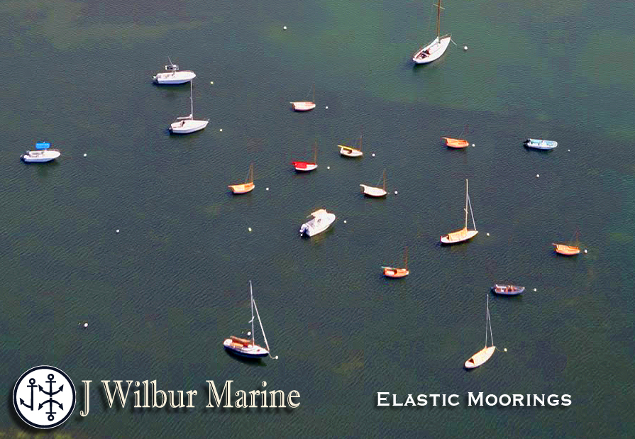 MouseOver to view Chain Mooring eel grass damage